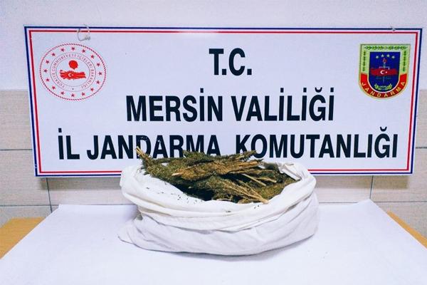 Mersin'de Uyuşturucu Operasyonunda 6 Kilo Esrar Ele Geçirildi