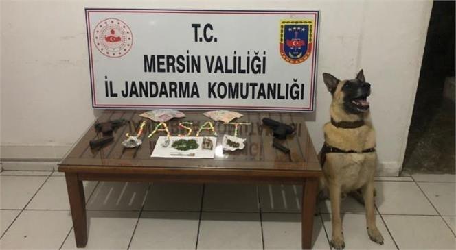 Erdemli'de Uyuşturucu Operasyonu